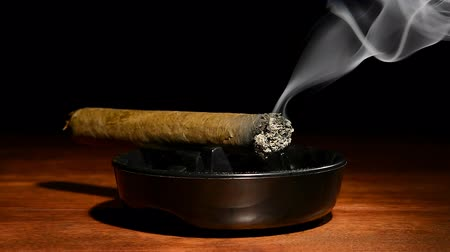 cygaro : A burning cigar in a classic black ashtray streaming smoking in a dark, moody setting. Shot with a Nikon D7100 24MP camera at f7, 30 shutter speed.