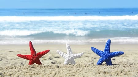 hvězdice : Conceptual summer holiday video of three red, white and blue starfish on the beach overlooking a turquoise ocean while celebrating the July fourth holiday.