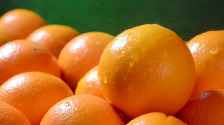 laranjas : While in the produce section, a grocer sprays cool water over delicious oranges to keep them fresh Vídeos