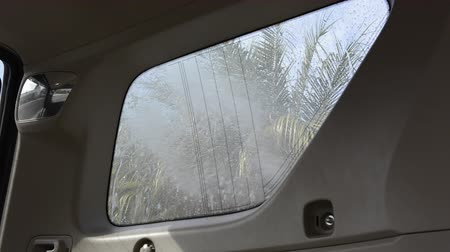 sıkıcı iş : A view from inside a car looking out a rear window while a person rinses the dirt from the tempered glass