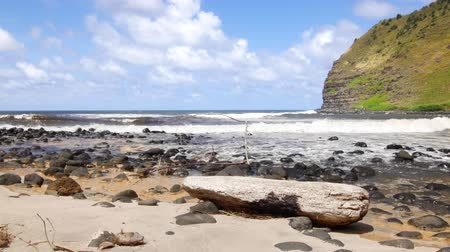 приморский : A rocky shoreline in Hawaii highlights the lush nature of the islands driven in part by plentiful rainfall.