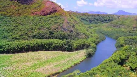 yemyeşil bitki örtüsü : The Wailua River jungle landscape in Kauai Hawaii used flows past waterfalls and other scenic natural wonders. And is the most used river for transportation in all of Hawaiis islands.