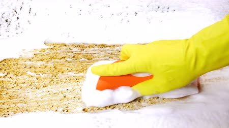 szőnyeg : A house cleaner cleaning carpet with a foam cleaner, protective glove and handbrush to remove dirt and grime