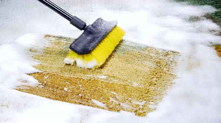 halı : A house cleaner cleaning carpet with a foam cleaner and brush to remove dirt and grime Stok Video