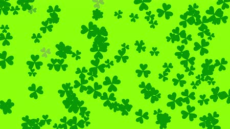 разброс : St. Patricks animated clovers against a bright green background. For use as a general backdrop, design element or as an overlay for placement of text or other copy. Стоковые видеозаписи