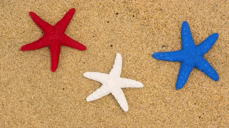 três quarto comprimento : Three starfish on a sandy beach symbolized with red, white and blue for use as a background element for the July fourth holiday.