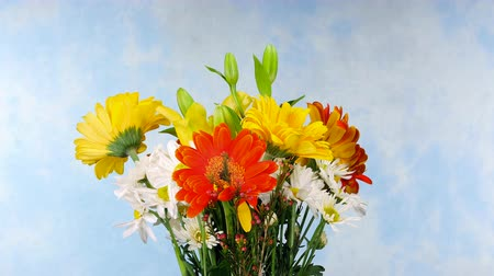 bouquets : A beautiful bouquet of flowers consisting of daisies and pansies rotating against a blue background