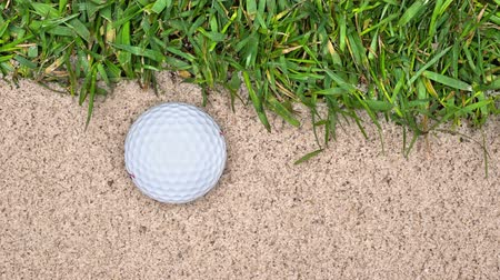 armadilha : A golf ball lands in a sand trap near the edge of the green, giving the golfer a tricky shot to make. Vídeos