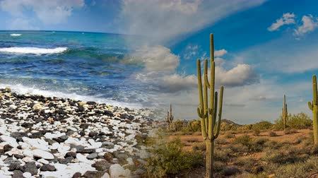 раскол : Split image showing a desert and an ocean in the same clip, two polarizing environments of weather and climate.