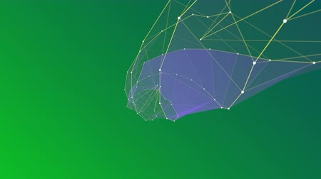 complexidade : A complex series of animated connected lines forming against a green background