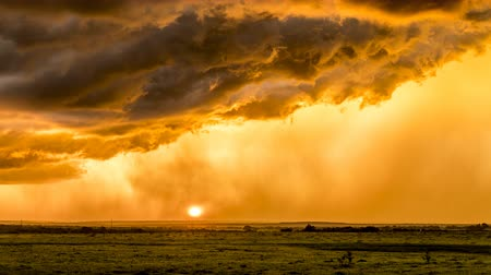 Suring sunset in the Great Plains in Tornado Alley, a storm moves through pouring rain against orange sunlight