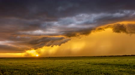 plain : Suring sunset in the Great Plains in Tornado Alley, a storm moves through pouring rain against orange sunlight