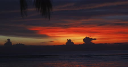 pacific islands : Red, orange, blue colors in the sky among clouds, sea or ocean water, palm leaf like in paradise Stock Footage