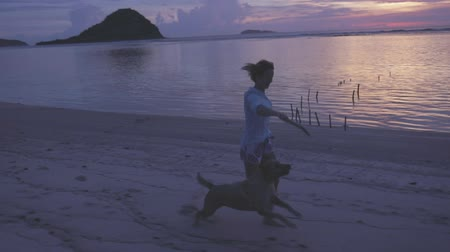 hůlky : young active girl or woman running on sandy beach (shore) at dusk with her jumping dog, pet, labrador, playing, rejoicing. sundown, evening, nature, tropical climate