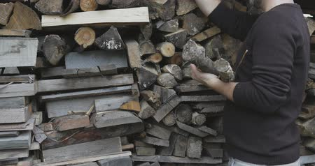 provést : busy guy bringing logs from shed,choosing dry and good ones
