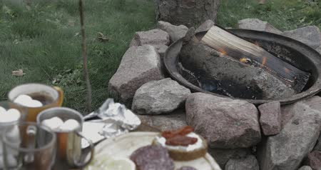 koçan : burning wood in bonfire or campfire or fireplace in focus, small table with different snacks and coffee out of focus. Picnic with friends or family in the garden, forest or park