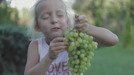 winogrona : Adorable toddler girl eats grapes in a winefarm on a sunny day. fullhd slow motion video shooting by handheld gimbal