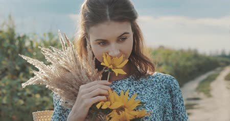 подсолнухи : beautiful sweet sexy girl in a blue dress walking on a field of sunflowers , cheerful woman sniffing flowers, countryside style, lifestyle 4K video shooting by handheld gimbal Стоковые видеозаписи