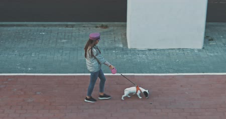 привязь : Top view of young woman walking her dog on city street . Girl with Jack Jack Russell Terrier . Cute little puppy . 4K video shooting by handheld gimbal Стоковые видеозаписи