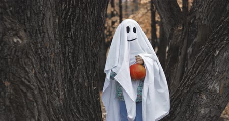 mysticism : Little girl in a costume ghost with orange pumpkin. Halloween celebration holiday. Funny smiling grimace Stock Footage