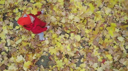 yellow jacket : Cute girls playing with yellow leaves on beautiful autumn day. Happy children having fun in city park. Little female model dressed in red coat and hat lying over leaves and smiling. Slow motion video