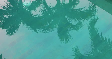 tourist silhouette : Tropical silhouettes of palm trees reflecting on the surface of a swimming pool . 4k video Stock Footage