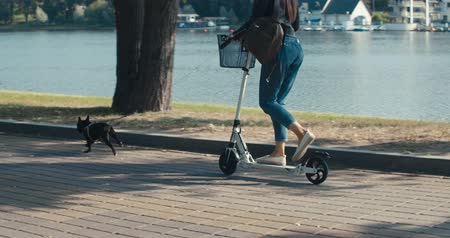 buldok : Young woman driver of electric scooter in city park. ecological transport. Girl walking with black French bulldog . 4K slow motion video footage 60 fps