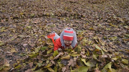 little kid falls in autumn foliage in the Park