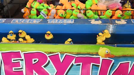 ducky : Swimming Duck Fun Fair Carnival Game Close Up