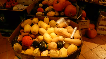 ação de graças : 4K Pumpkins And Squash In Low Light