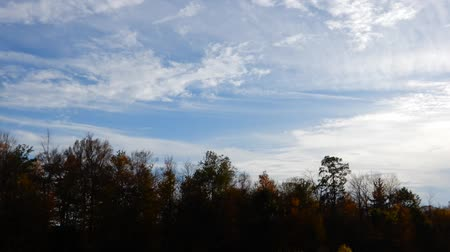 prędkość : Time Lapse Clouds over Forest on a Sunny Day