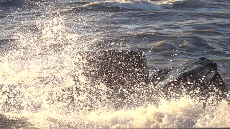 króliczek : Big Waves Crashing Against Black Rocks In Ocean Slow Motion 002