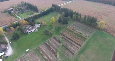 tava : Farmhouse With Crops & Irrigation Aerial View From Top