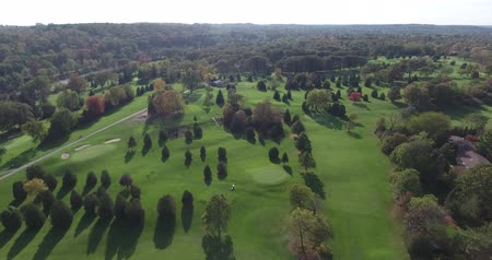 тройник : Golf Course Green Aerial Flyover Zoom From Above Стоковые видеозаписи