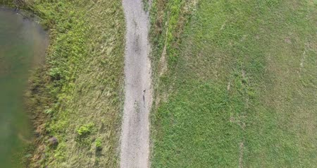 olhar : Drone Aerial View Of Bird On Ground Flying Away