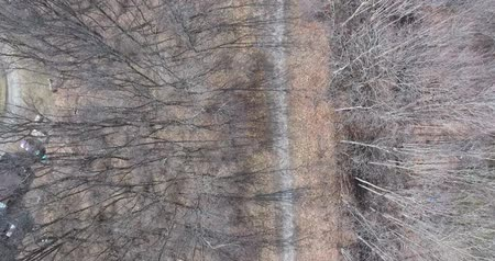 lombhullató : Flying Along Pathway In Bare Woodlot Towards Bridge Aerial View