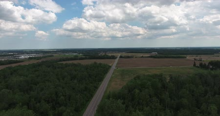 irigace : Flying Over Long Rural Highway Between Forests Aerial View