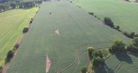 silvicultura : Flying Quickly Over Farmers Field Towards Junkyard Drone Aerial View