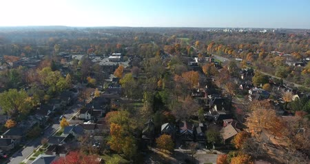 Orange Red e Green Autumn Trees in Dund Neighborhood Aerial Drone View