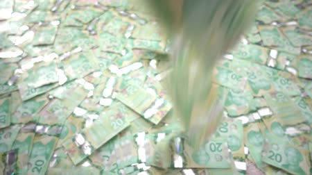 faraglioni : Candian 20 Dollar Bills Slow Motion Blur Falling