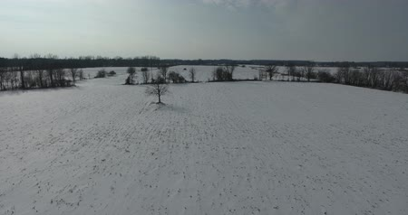 irrigate : Flying Towards Trees In Snow Covered Farmers Field Aerial Drone Shot