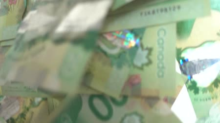 bond : Veel Canadese 20 Dollarbiljetten vallen Slow Motion Stockvideo