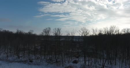 šedé pozadí : Winter Forest Trees Pan With Silver Clouds Aerial View
