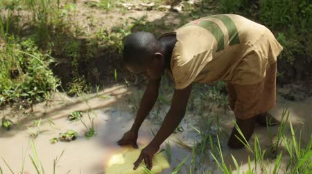coletando : African child using a large bottle to fill water from a dirty water source Stock Footage