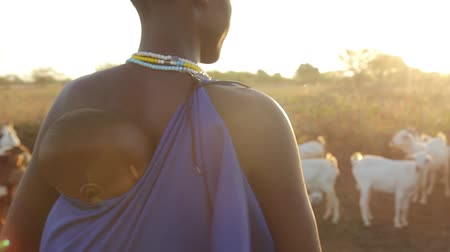 vila : Maasai child on mothers back at sunrise with sunflare Vídeos