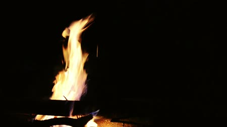 Log fire at a campsite burning gentle at nighttime with nobody there Stock Footage