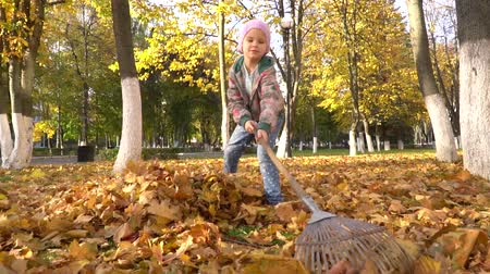 piled up : A little girl collects in a pile, fallen from the trees, the leaves.
