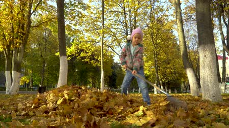 A little girl collects in a pile, fallen from the trees, the leaves.