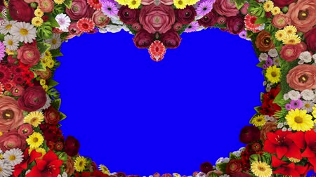 Animation of swirling colors forming the silhouette of a heart on a blue background. Template for greetings for wedding, Valentines Day, mothers Day, family Day, birthday. Vídeos