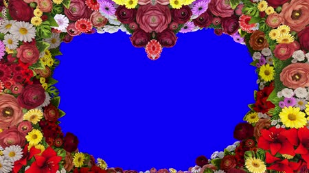 Animation of swirling colors forming the silhouette of a heart on a blue background. Template for greetings for wedding, Valentines Day, mothers Day, family Day, birthday. Loop video.